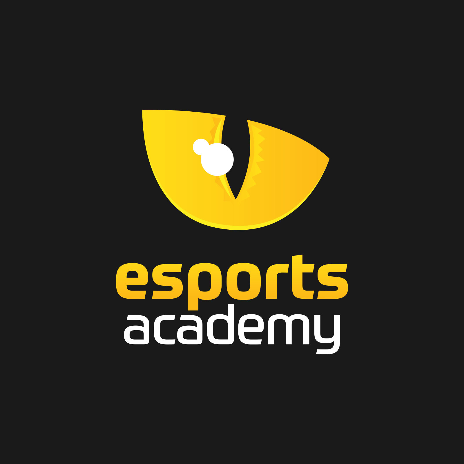 Logo design for Esports Academy